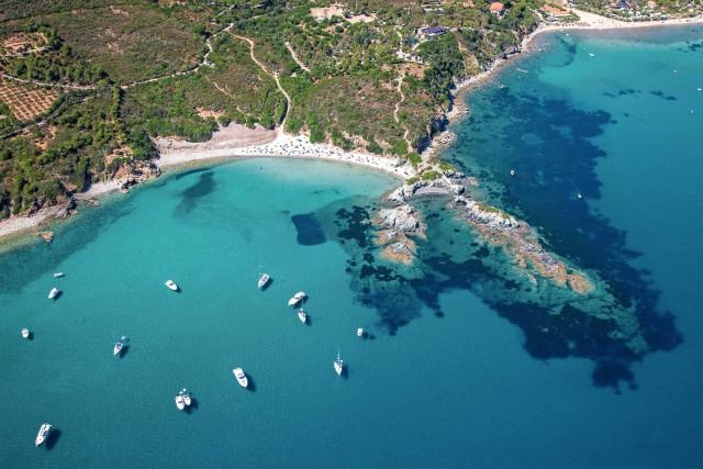 Grazie al progetto Linea di boe, che istituisce il divieto di pesca in alcune aree, all'Elba si scopronoveri e propri paradisi per le immersioni.