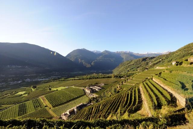 Un'immagine suggestiva del territorio di Bianzone, in provincia di Sondrio