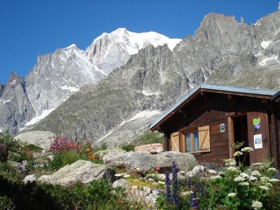 Il Giardino Botanico Saussureasorge su unpianoro panoramico. Qui sono stati ricreati un pascolo alpino e gli ambienti umidi.