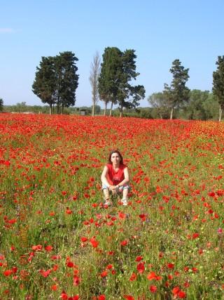 Nel Parco naturaleBosco e Paludi di Rauccio (a pochi chilometri dalla mia città, Lecce) durante una gita domenicale di inizio maggio. Di Carla Pulli.