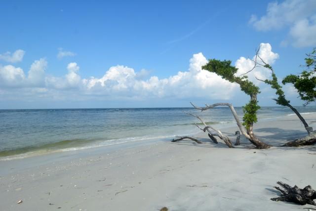 Cayo Costa, Florida Un parco naturale accessibile solo via mare è la scelta di Susan Portnoy, blogger di The Insatiable Traveler.