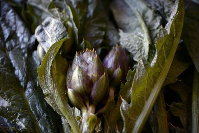 I famosi carciofi di Albenga dalle foglie larghe e lisce, ma soprattutto dalgusto dolce. Va consumato crudo.
