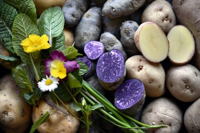 Patate, fiori ed erbe aromatiche all'agriturismo Ca' del Duduro, a Garessio.
