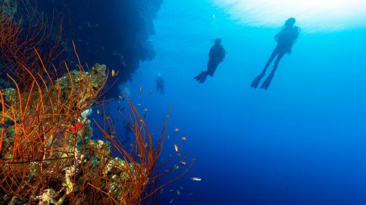 Foto Le acque più pericolose al mondo dove nuotare