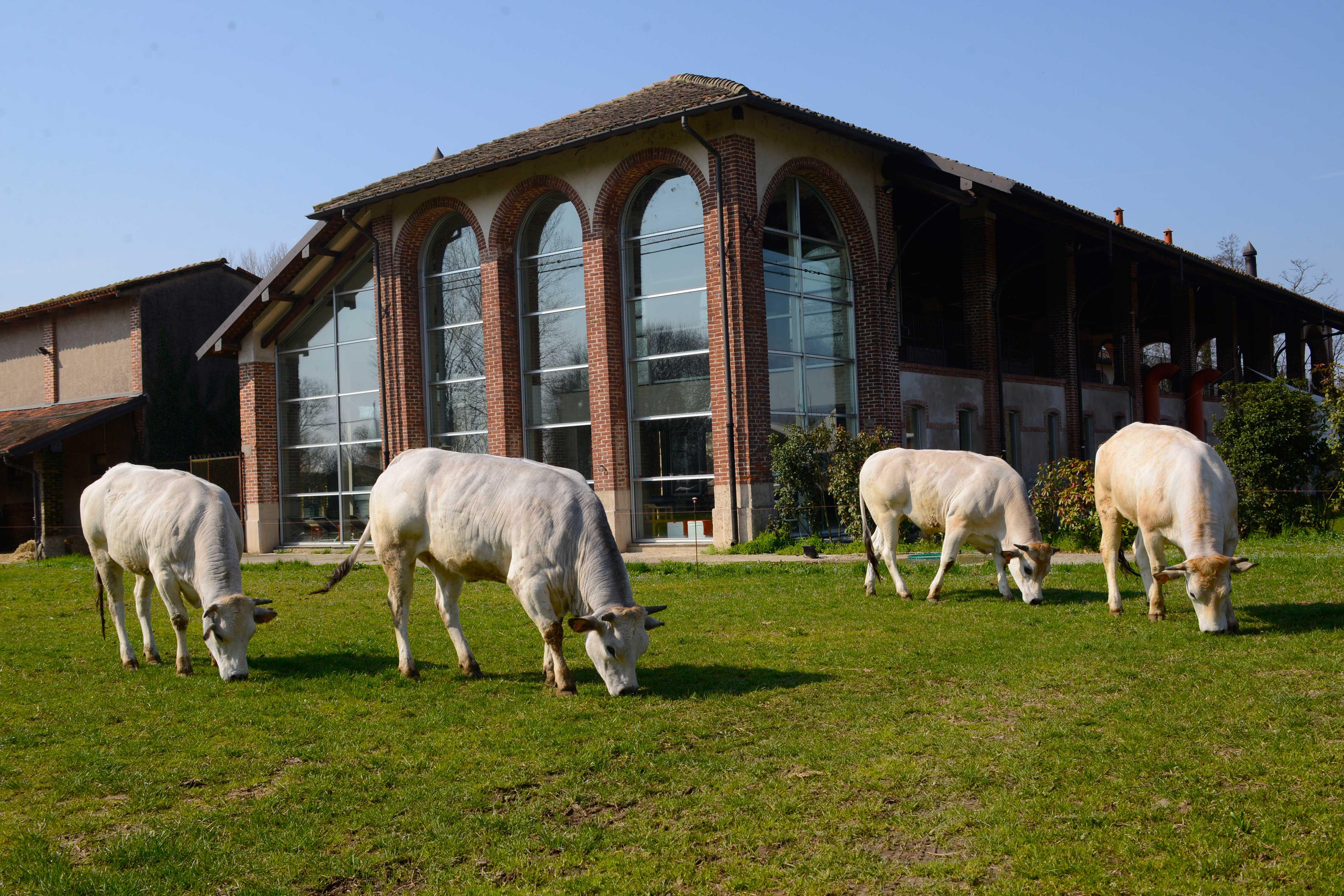 Weekend di relax nella Cascina con Spa, a due passi da Milano