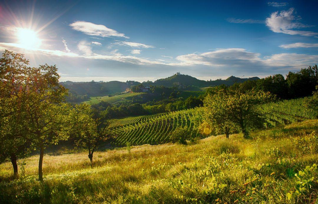 Di Gavi in Gavi: weekend goloso in collina