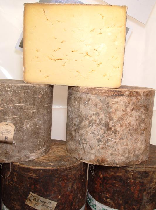 Cheese, ecco i formaggi più curiosi