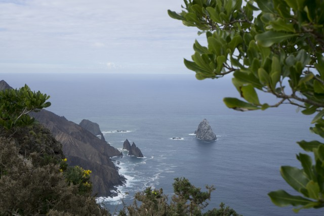 Le scogliere della costa sud dell'isola