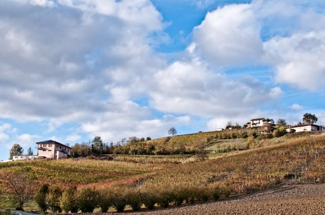 La zona delle Langhe vanta un'alta densità di chef stellati: da Alba a Serralunga d'Alba, passando per Piobesi d'Alba e La Morra, si incontrano tante tavole d'eccellenza (sono 15 gli astri Michelin della provincia di Cuneo, distribuiti tra Langhe e Roero).