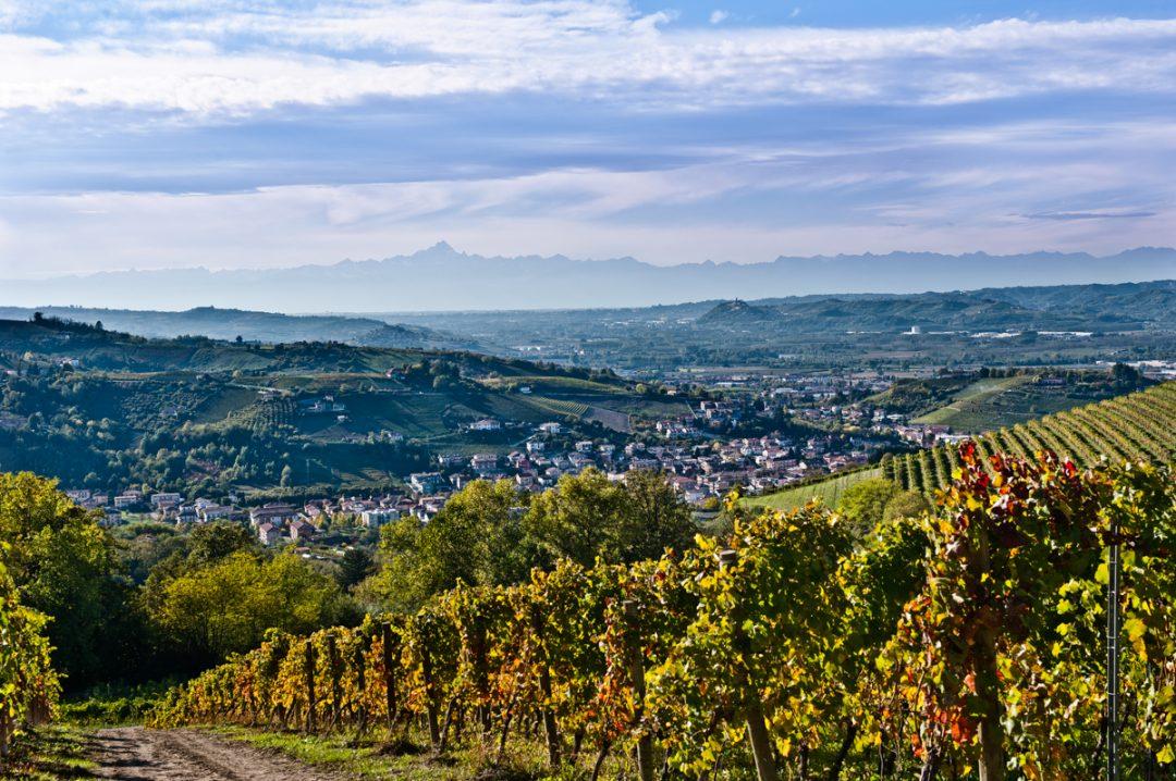 Langhe e Roero: grandi sapori tra le vigne
