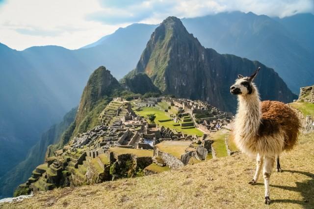 15)SUL MACHU PICCHU –I visitatori del Machu Picchu possono avere il timbro sul passaporto con la sagoma della città perduta degli Incas. Basta richiederlo al chiosco all'entrata del sito archeologico