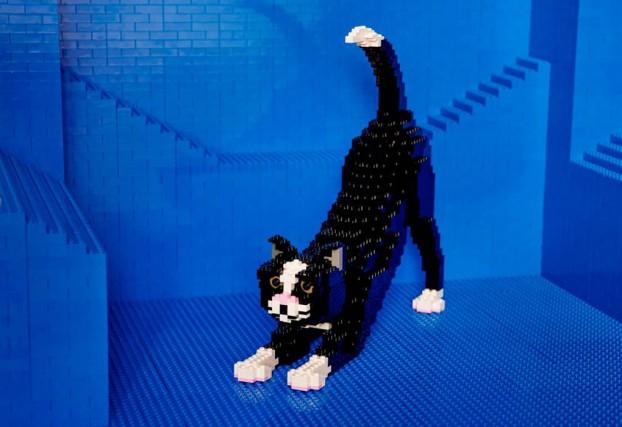 C'è persino un gatto, fatto di Lego