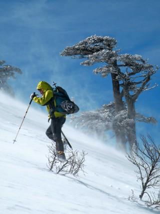 Le creste del Massiccio del Pollino si raggiungono, con le racchette da neve o lo scialpinismo, in escursioni di uno o più giorni, dal Colle dell'Impiso, da Piano Pedarreto, da Piano Ruggio, da Lago Duglia.