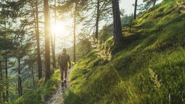 In cammino nella natura - i più bei cammini d'Italia