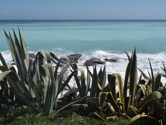 A Bordighera, si rimane affascinatidagli splendidi colori del mare.