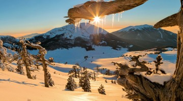 Sulla neve in Basilicata: ciaspole, fondo e scialpinismo sul Pollino