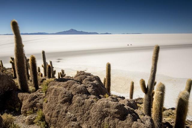 Il deserto Salar deUyunivisto dall'alto dell'isola Incahuasi (casa dell'Inca).