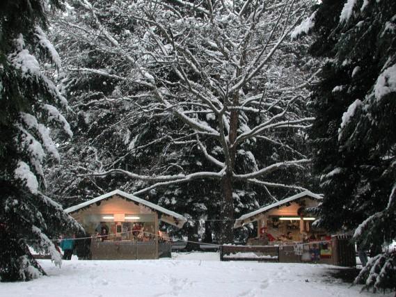 La magia del Natale si accende al Levico Terme, dove il mercatino di Natale si tiene tra i boschi innevati.