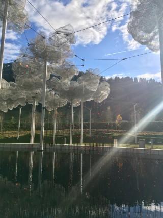 Nel giardino brillano le Nuvole di Cristallo