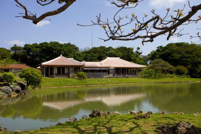 I giardini reali di Shikinaen, a Naha, sull'isola di Okinawa. Grazie al clima subtropicale, la fioritura dei ciliegi avviene con molto anticipo rispetto al resto del Giappone: tra gennaio e marzo.