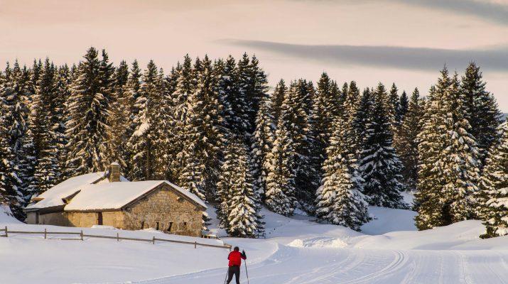 Foto Alpe Cimbra: emozioni sulla neve a 360 gradi