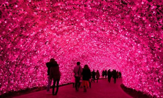 Il mondo illuminato (e fatato) di Nabana no Sato