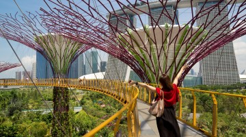 Gardens by the Bay – I'm a Supertree!