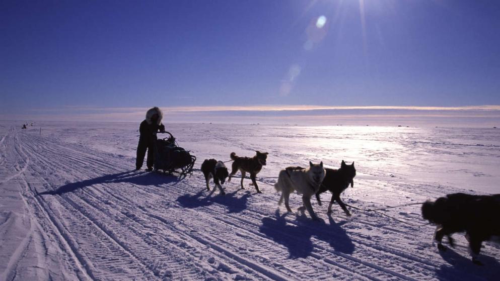 I posti più freddi del pianeta: la top 10
