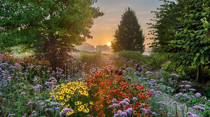 Foto Le foto di giardini più belle del mondo