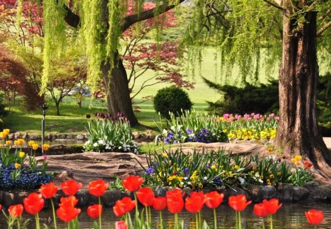 Tra Le Rose E Le Betulle Del Giardino Di Ninfa O Tra I Tulipani Multicolore  Del Parco Di Sigurtà. Tra I Ciliegi Di Vignola E Le Camminate Nei Frutteti,  ...
