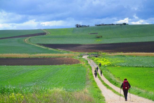 Un tratto della Via Dauna