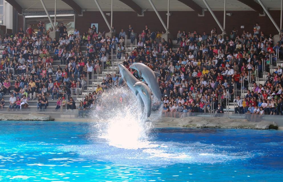 Parchi divertimento italiani: le novità e le dritte per risparmiare