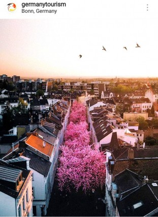 Città fiorite in primavera 2018