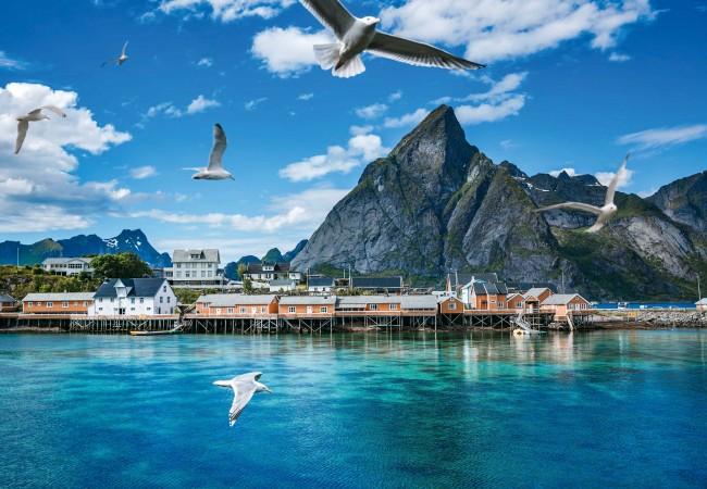In Viaggio Con Dove In Norvegia Fino Ai Confini Del Circolo Polare
