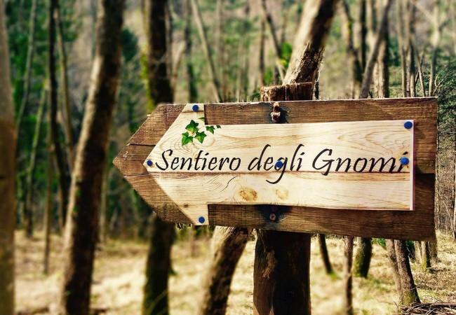 Bagno di Romagna: cosa fare con i bambini - Dove Viaggi