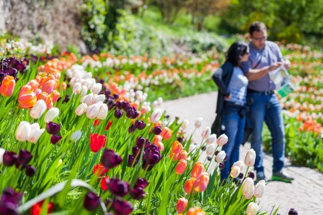 Ponti di primavera: 10 idee last minute