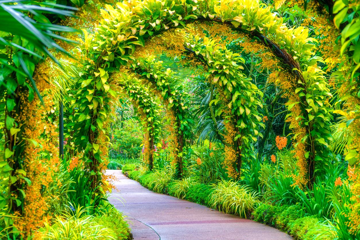 Natura in fiore 20 giardini pi belli del mondo da vedere for Giardini immagini
