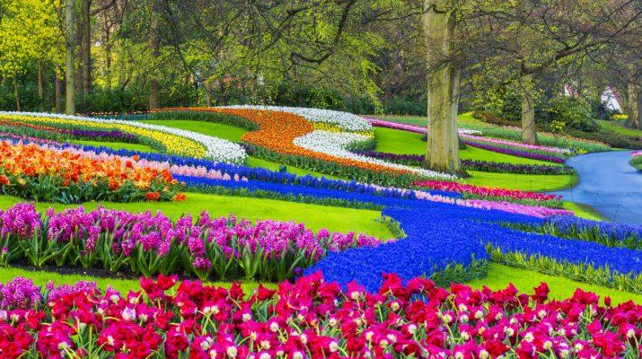 Foto 20 giardini da vedere una volta nella vita