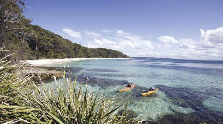 Foto Australia tra spiagge, canguri e ostriche