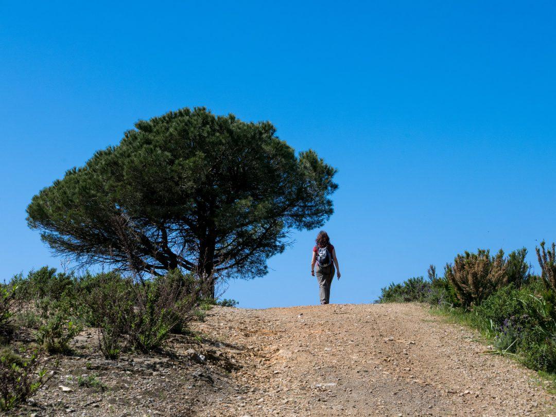Isola d'Elba: sui sentieri arriva Google Maps