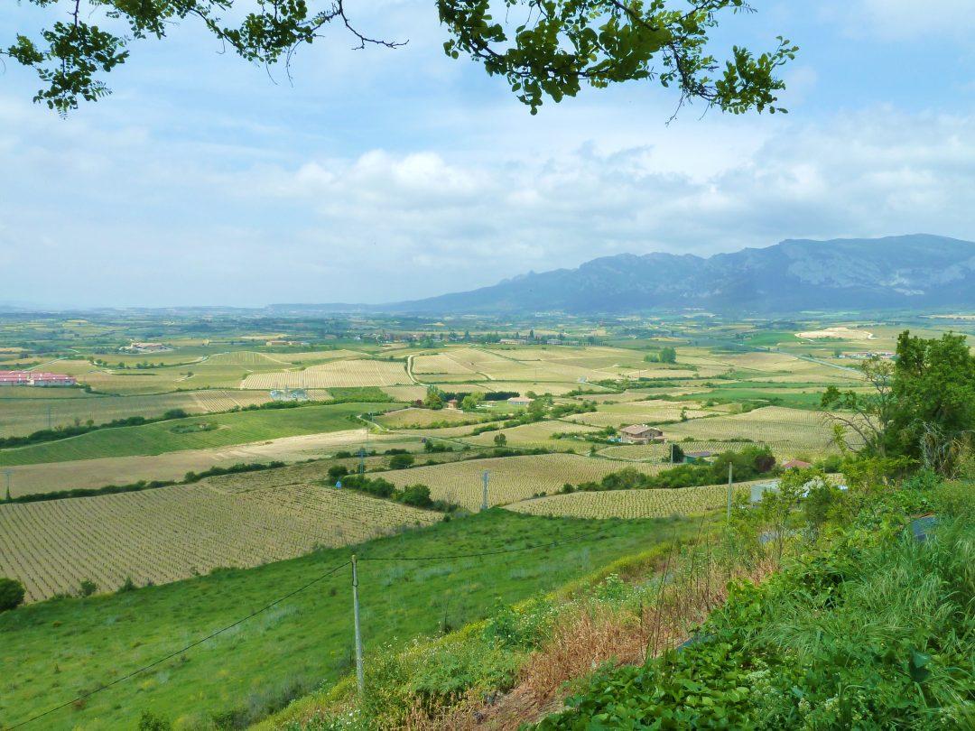 Paesi Baschi: Vitoria e la strada del vino