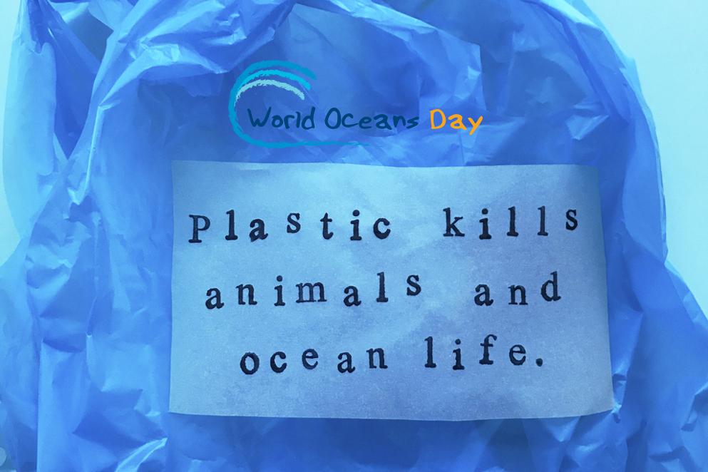 World Oceans Day: tutte le iniziative italiane