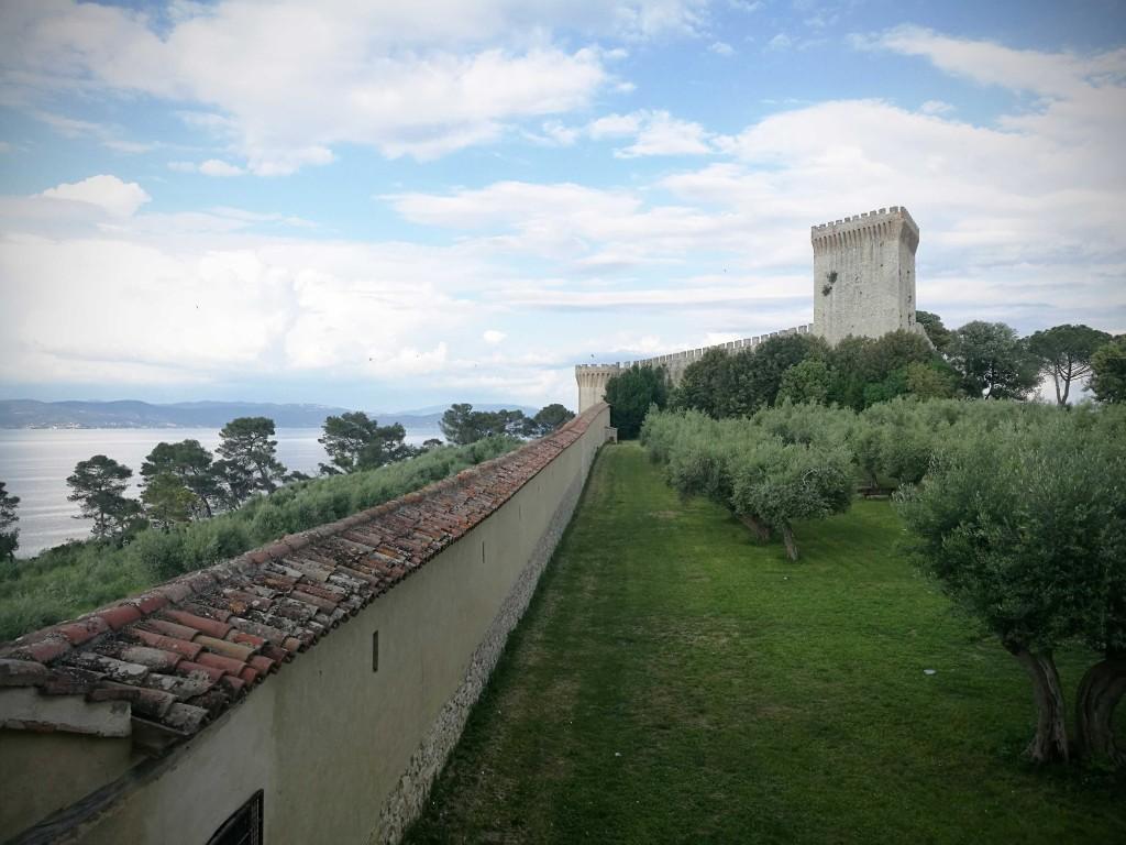 Camminamento-coperto-percorribile-sulla-sinsistra-e-giardino-della-Rocca-con-olivi-2
