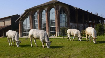 cascina caremmaNatureSPA2