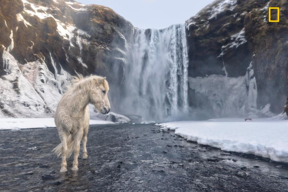 Viaggi e natura: le foto più belle