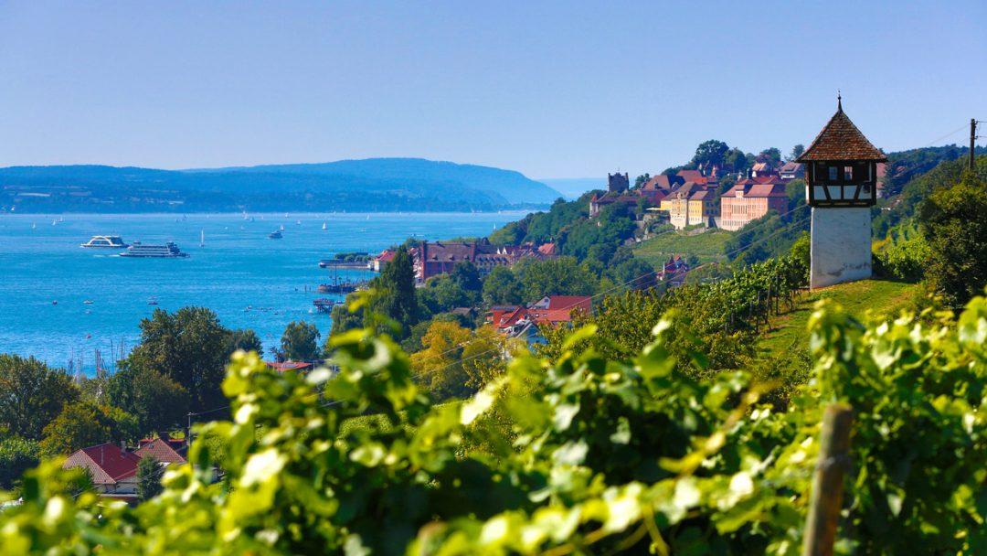 Non solo degustazioni: le migliori wine experiences tra le vigne