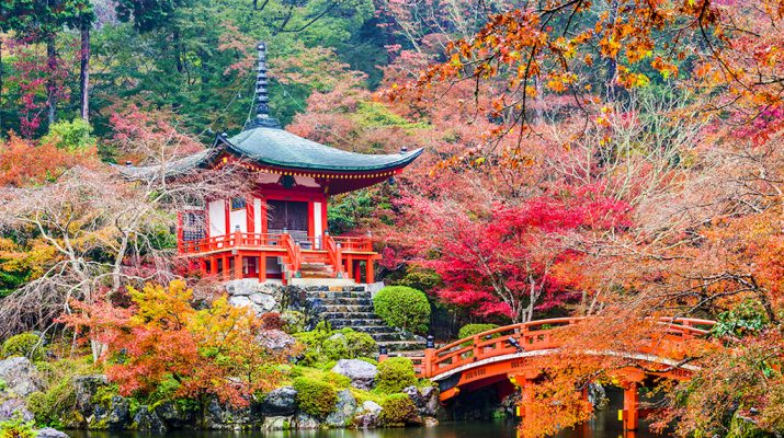 Foto Giappone a basso prezzo: ecco 10 dritte