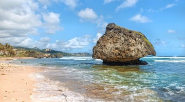 Barbados Tourism Marketing Inc. www.visitbarbados.org