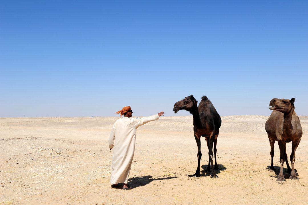 Oman del sud, sabbie nobili
