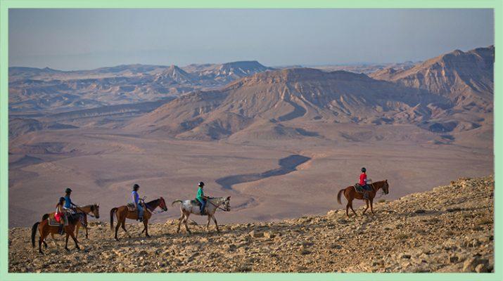Foto Israele: viaggio nel deserto del Negev